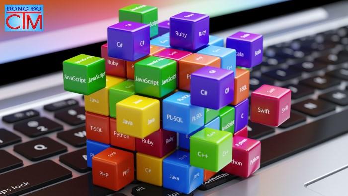 chọn nghề nào trong ngành công nghệ thông tin - lập trình - Học Trung cấp